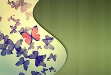 Free Colorful Background With Butterfly Stock Image - 17885421