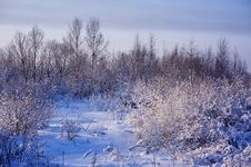 Free Winter Landscape Stock Photos - 17885823