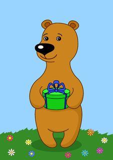 Teddy-bear With Gift On Meadow Stock Photos