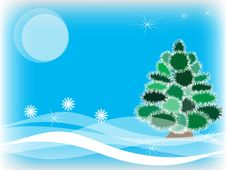 Free Winter Fur-tree Stock Photo - 17889440