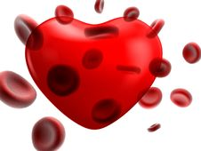 Free Image Of The Flow Of Blood And Heart Stock Images - 17889614
