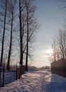Free The Sun On Winter Rural Road Royalty Free Stock Photography - 17891057