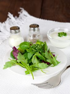 Salad With Dressin Salt And Pepper Stock Photography