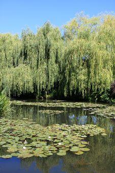Free Claude Monet`s Garden Stock Images - 17891394