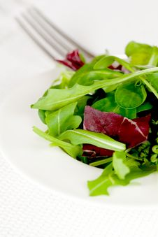 Free Fresh Salad On Plate Royalty Free Stock Image - 17891416