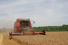 Free Combine Harvesting Wheat Stock Photos - 17892473