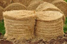 Agricultural Warehouse, Close-up Stock Image