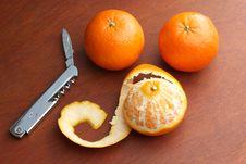 Three Mandarin Oranges Royalty Free Stock Photos