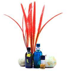 Free Natural Perfume Bottles Royalty Free Stock Photography - 17896857
