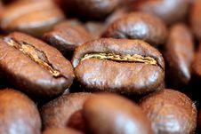Free Coffee Beans Royalty Free Stock Photo - 17897295