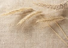 Free Wheat Ears Border On Burlap Background Stock Photos - 17899433