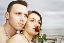Free Couple With Rose Stock Photography - 17899902