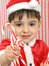 Free Candy Canes Royalty Free Stock Images - 1794269