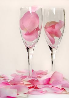 Free Petals And Flutes 4 Stock Image - 1794391