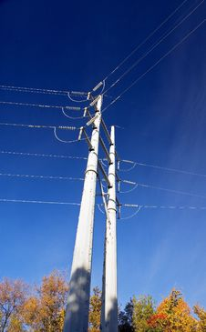 Power Lines Over Autumn Treetops Stock Image