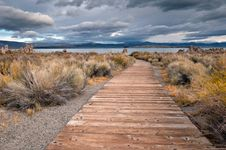 Free Mono Lake Royalty Free Stock Photo - 17902405