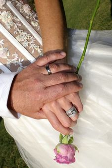 Free Couple S Hands With Rings And Rose Stock Images - 17903114