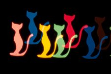 Free Light Cats Royalty Free Stock Image - 17903396