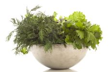 Free Fresh Herbage Stock Photography - 17903902