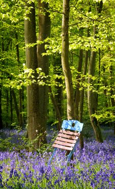 Free Garden Chair Between Flowers Royalty Free Stock Photos - 17904538