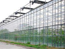 Free Greenhouse Exterior Stock Image - 17905491