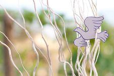 Free Paper Dove Stock Image - 17906551