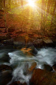 Free Stream In Sunrise Stock Image - 17909741