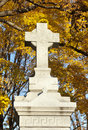 Free Cross Monument In Cemetery Royalty Free Stock Photo - 17911105