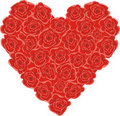 Free Heart From Roses Royalty Free Stock Photos - 17915438