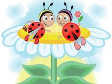 Ladybugs, CMYK Stock Photos