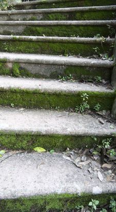 Free Garden Stairs Stock Photography - 17912872