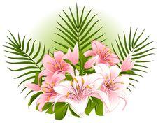 Free Beautiful Lily Bouquet Stock Photo - 17914520