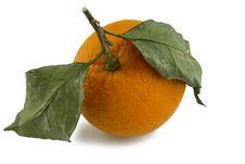 Free Fresh Orange Stock Photo - 17916130
