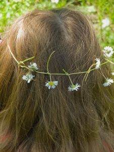 Free Feminine Hair With Daisy Flowers Wreath Stock Photos - 17916393