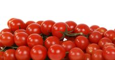Free Cherry Tomato Royalty Free Stock Photography - 17916937