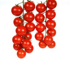 Free Cherry Tomato Stock Images - 17917064
