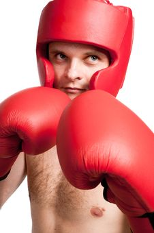 Free Professional Fighter Isolated On White Background Royalty Free Stock Photography - 17919147