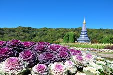 Free The Stupa Phra Mahathat Naphamethanidon Stock Photography - 17919832