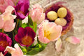 Free Tulip Bouquet At The Eastern Time Stock Photo - 17920760