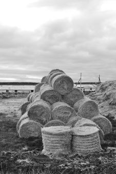 Agricultural Warehouse, Close-up, Black And White Royalty Free Stock Photos