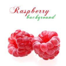 Free Raspberries Stock Photo - 17920840