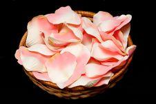 Free Rose Textile Petals On Black Royalty Free Stock Image - 17921106