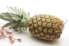 Free Pineapple With Flower Royalty Free Stock Photography - 17922597
