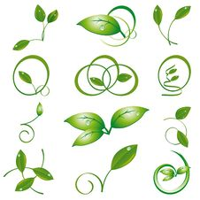 Free A Set Of Green Leaves Royalty Free Stock Images - 17925389