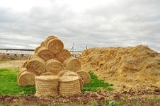 Agricultural Warehouse, Close-up, Horizontal Stock Image