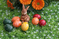 Free Easter Decoration Royalty Free Stock Photo - 17939865