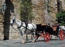 Free Horses Royalty Free Stock Image - 17930616