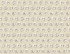 Seamless Pattern With Camomiles Royalty Free Stock Image