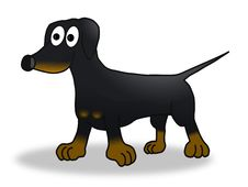 Free Wiener Dog Royalty Free Stock Photography - 17931967