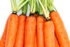 Free Bunch Of Organic Carrots Stock Images - 17934564